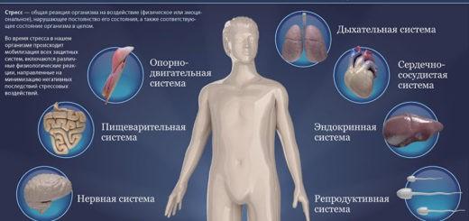 кожные заболевания возникают из-за стресса