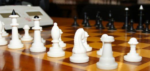 спор шахматистов