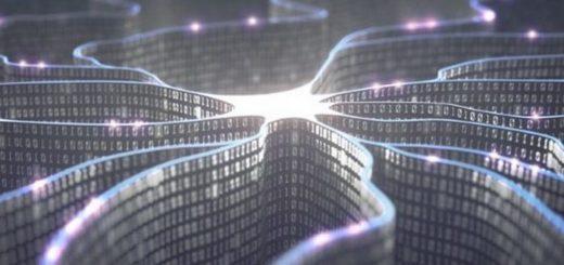 Ученые превратили живые клетки в программируемые биокомпьютеры
