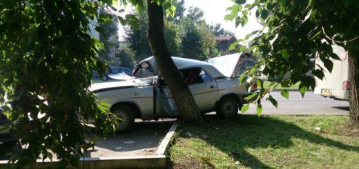 Волга влетела в дерево
